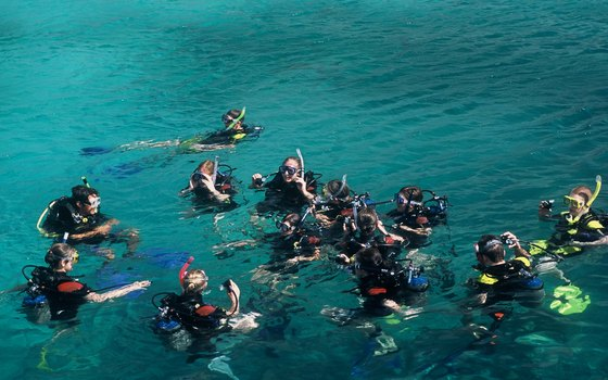 Many snorkeling tours offer snorkeling classes.