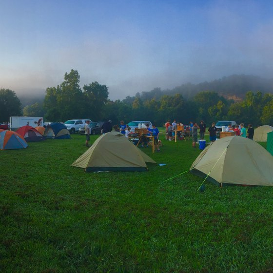 A bunch of tents and cars camping in the foggy morning.