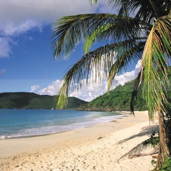 Factors Influencing Tourism in the Caribbean
