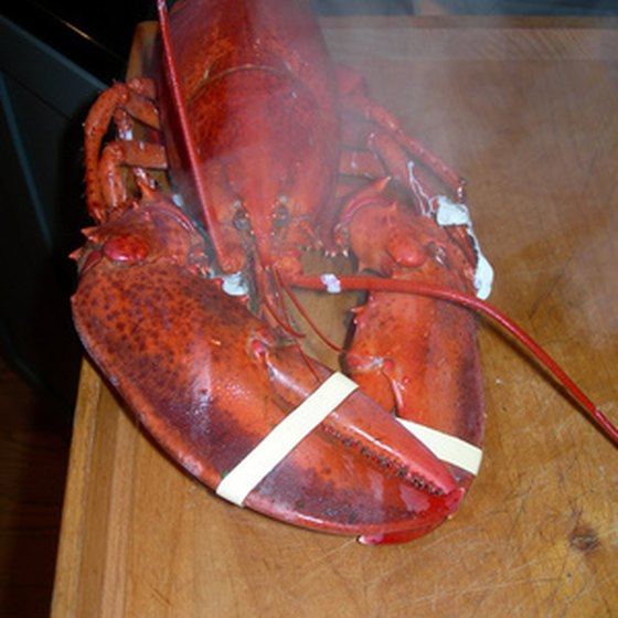Maine lobster is always in season.