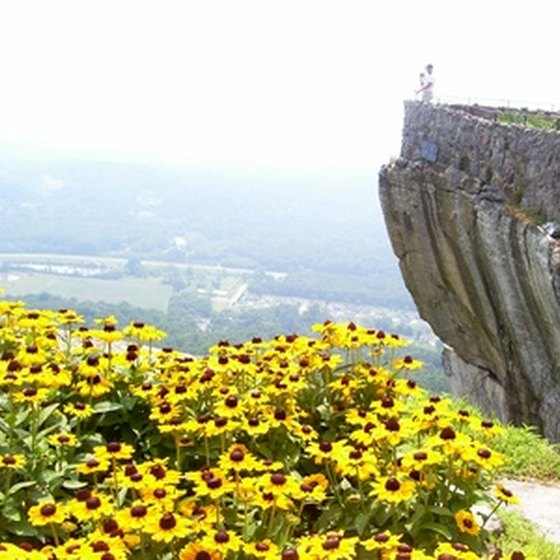 Lookout Mountain features dramatic views and spring wildflowers.
