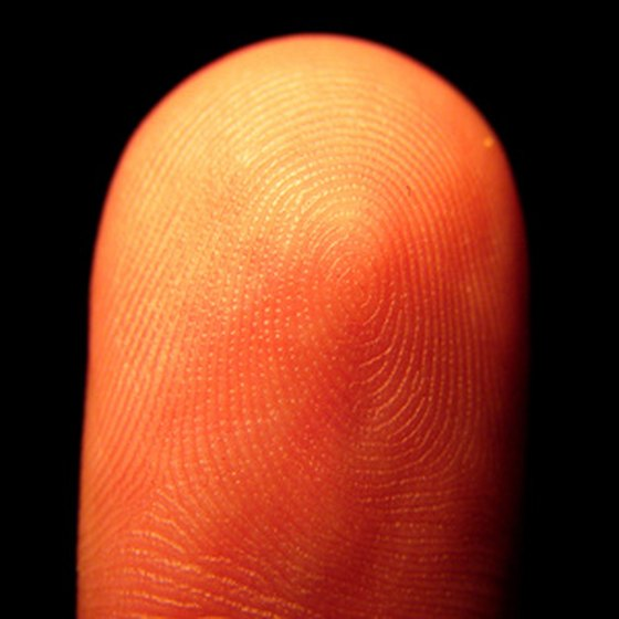 Fingerprints are a type of biometric data taken for Bosnian passports.
