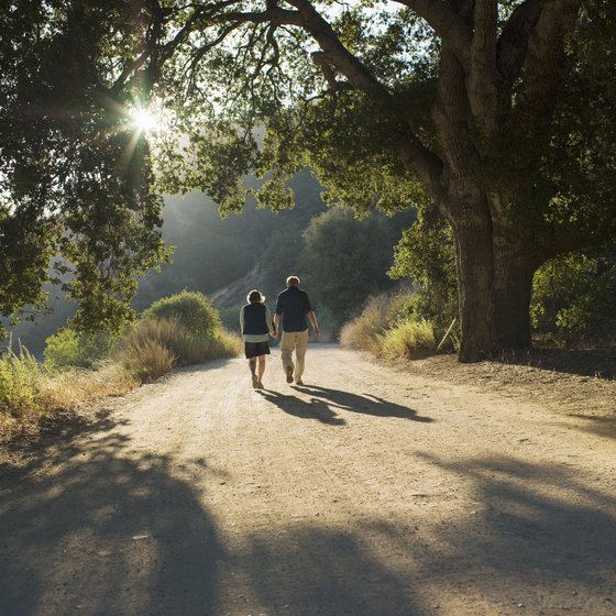 Hiking offers both physical and mental benefits to seniors.