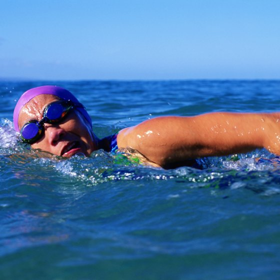Proper nutrition is crucial for endurance sports such as distance swimming.