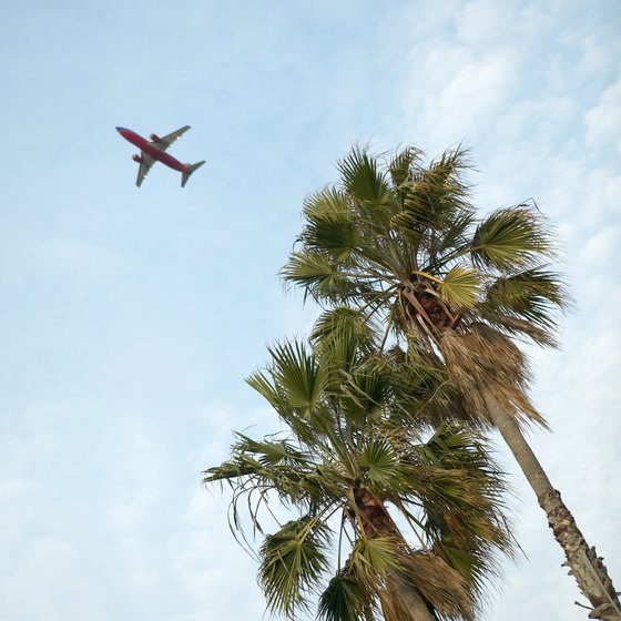 Book a cheaper flight to a locale where palm trees sway.