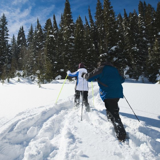 Go snowshoeing or skiing in Cache Valley in the winter, then come back in the summer to hike those trails.