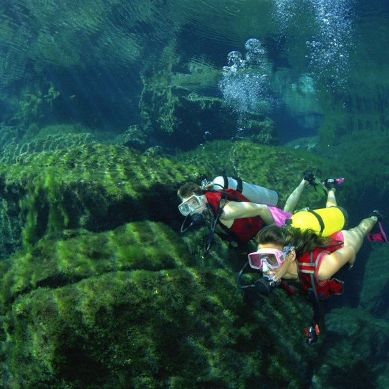 The Mesoamerican Reef is one of the best diving destinations in the world.