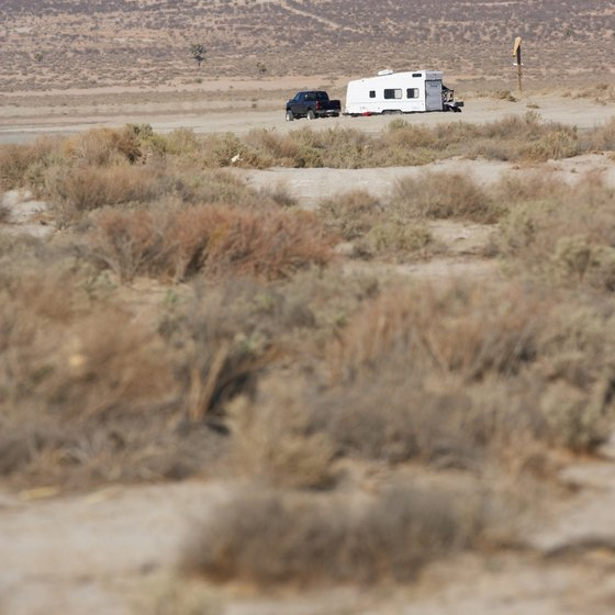California's Mojave Desert is one spot for camping during the winter.