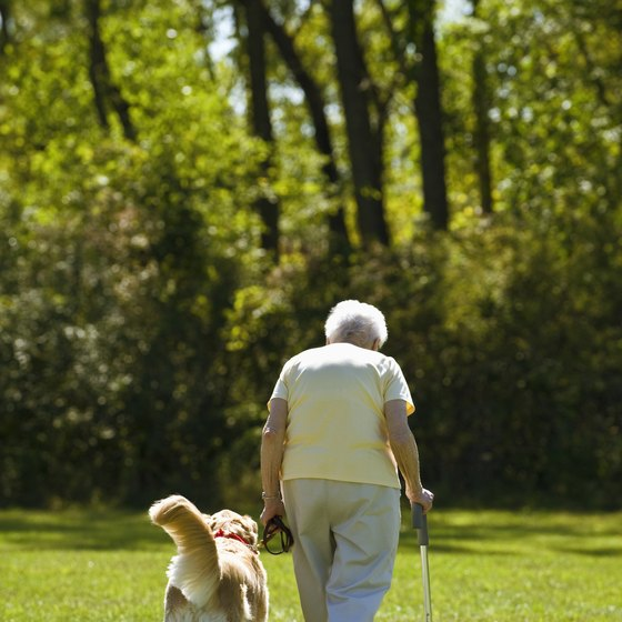 Walking can help strengthen your legs.