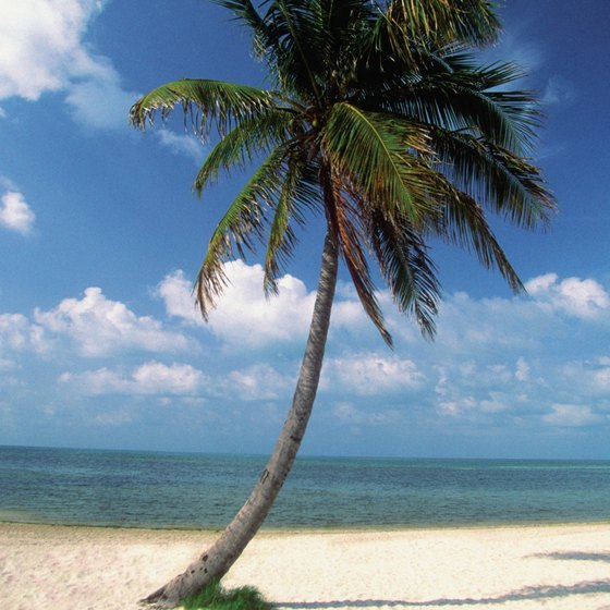Smathers Beach in Key West is a good option for snorkeling from the shore.