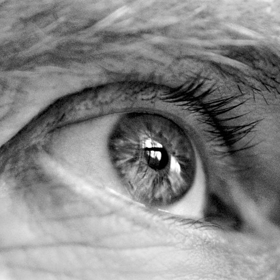 Vitamin A in borage may prevent age-related macular degeneration.