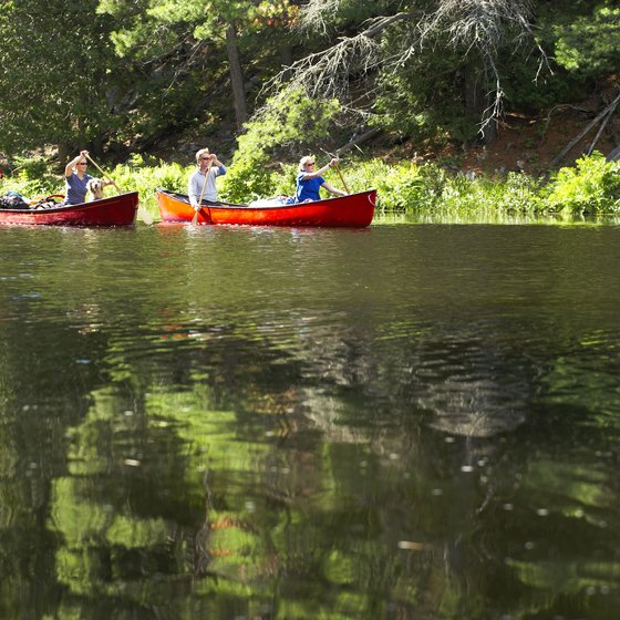 The Delta area is a natural wonderland filled with woodlands, streams, lakes and rivers.