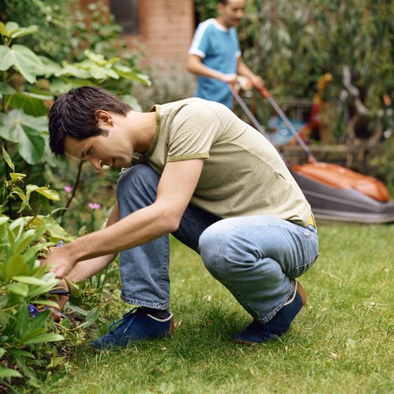 Landscapers prepare for weather delays, natural disasters and essential customer service.