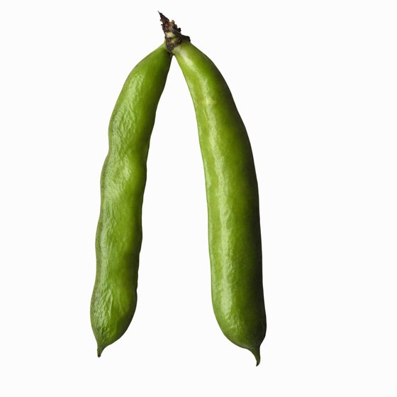 Fava beans are high in nutrition that can reduce the risk of heart disease and other conditions.