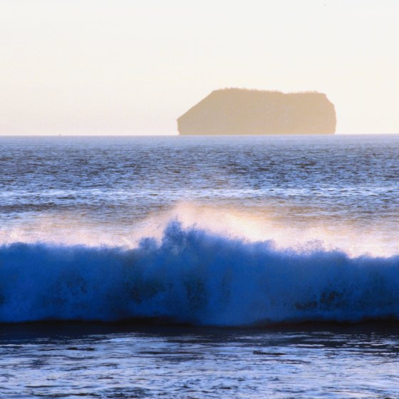 The Galápagos Islands are one of several excellent surf destinations in Ecuador.