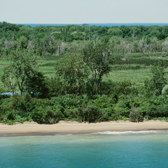 The sandy beaches of Point Pelee National Park extend for almost 13 miles.