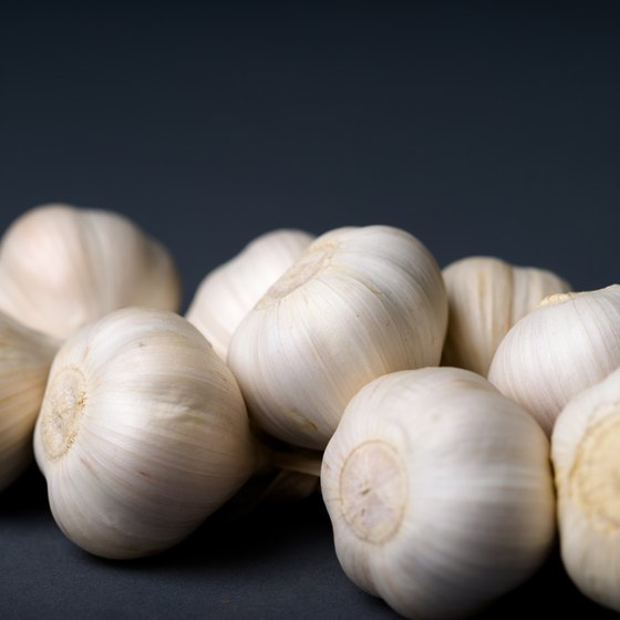 The allicin in garlic fights cancer and cardiovascular disease.