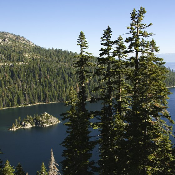 Cisco Grove Campground is less than an hour from Lake Tahoe.