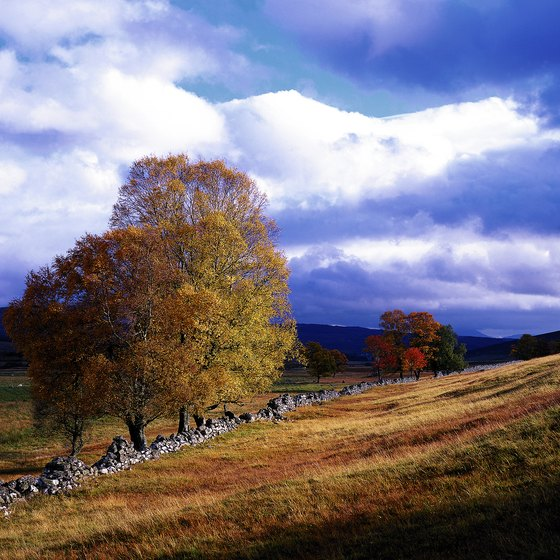 Autumn colors in Scotland