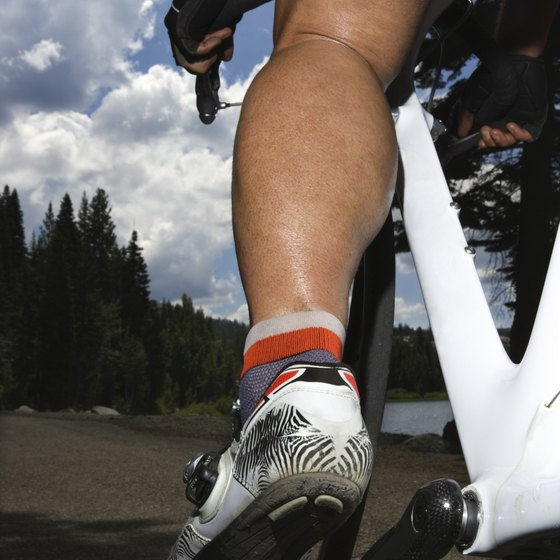 The movements of the calf muscles help you ride your bike.