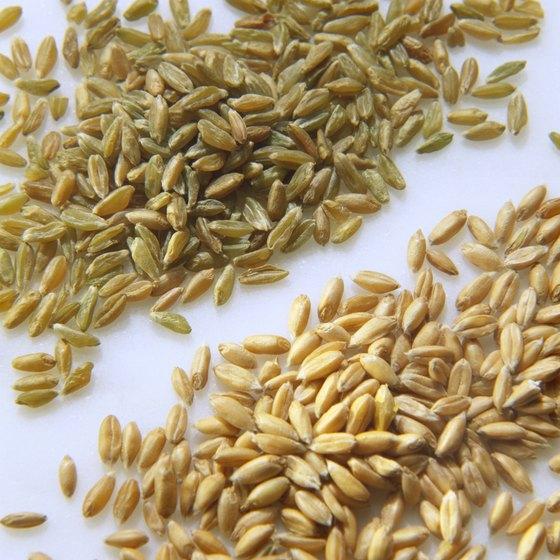 Spelt flour is made from ground spelt kernels.