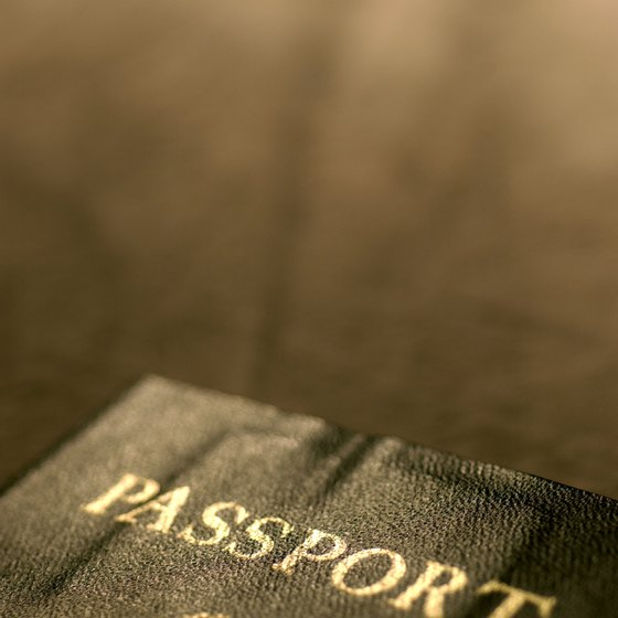 In most cases just your passport will get you into Germany.
