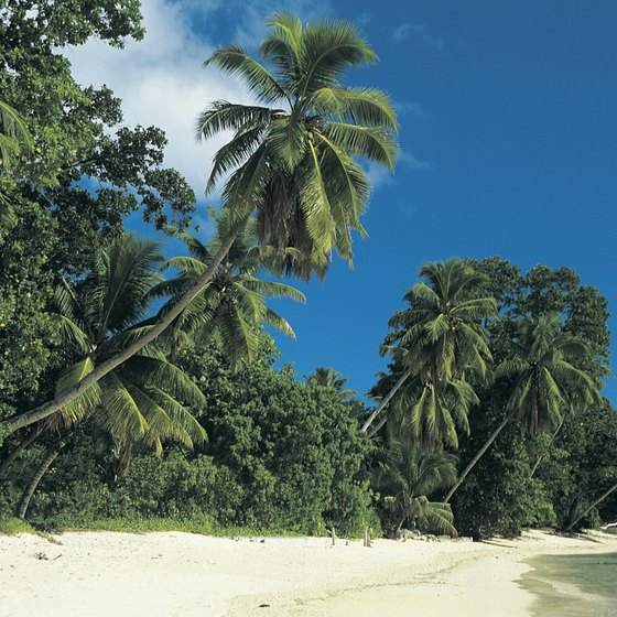 The Seychelles include both mountainous and low-lying islands.