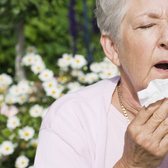 Seasonal allergies are common.