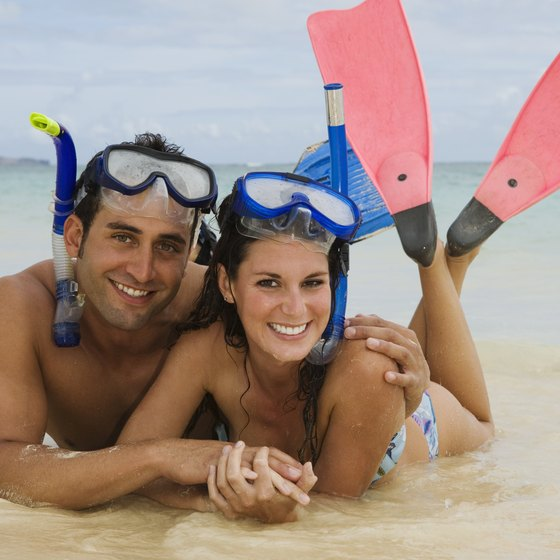 Snorkelers on the beach, suited up and ready for an adventure.