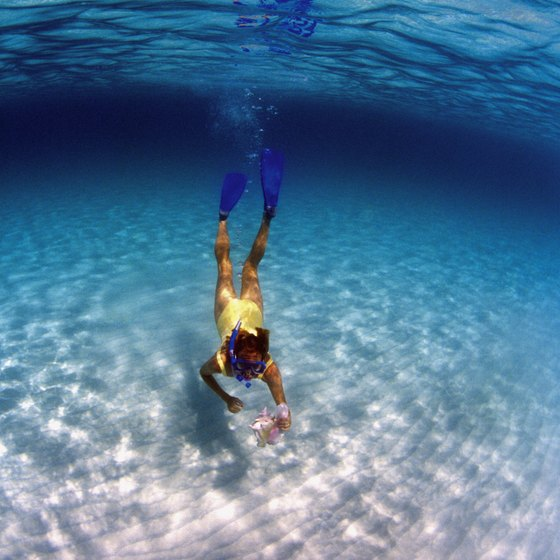The waters off Grand Cayman Island offer some of the best snorkeling in the world.