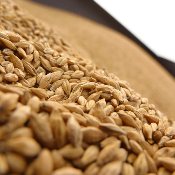 Wheat contains more fiber, but less folate, than rice.