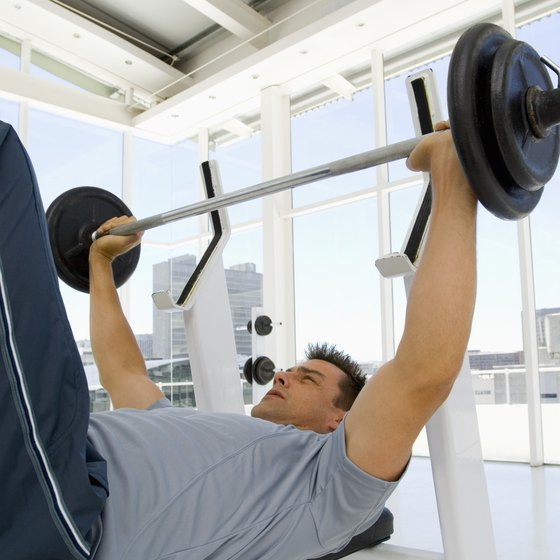 The bench press primarily develops the chest but also recruits the shoulders.
