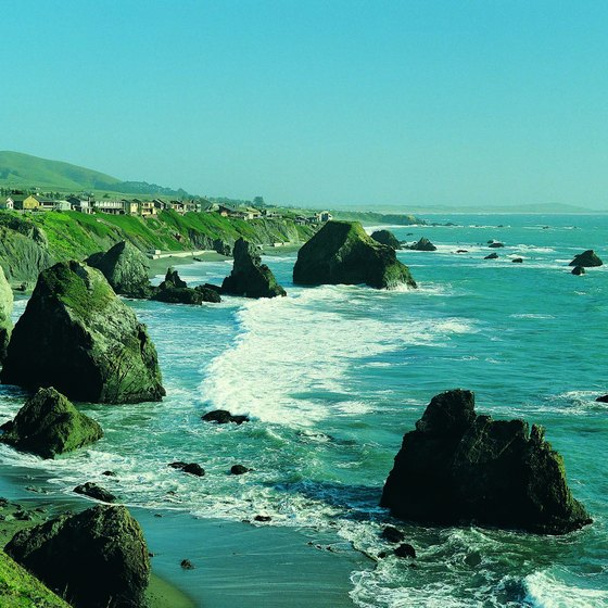 The rugged California coastline between Bodega Bay and Jenner.