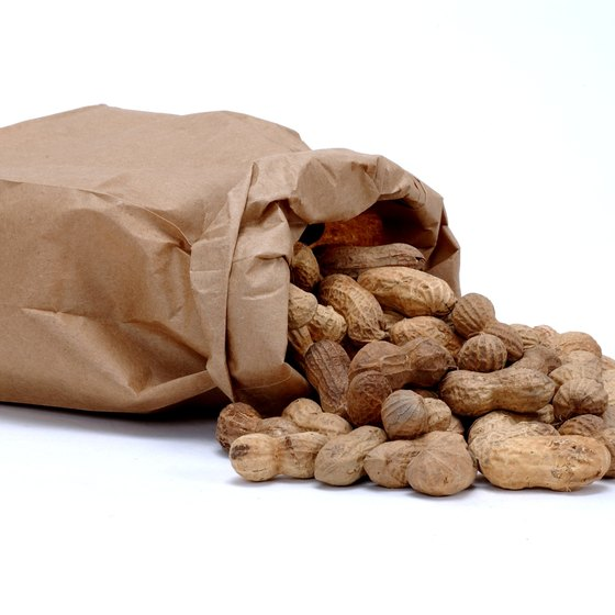 Peanuts are one of the largest crops in southwest Texas.