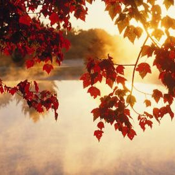Places To Visit In The Fall On The East Coast: The Best Time To Visit The East Coast For Fall Colors