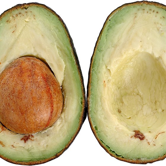 Avocados are one of the better sources of monounsaturated fats.
