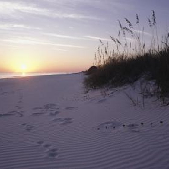Florida Panhandle Campgrounds On The Beach