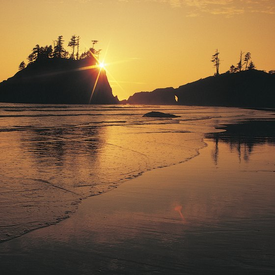 Rugged cliffs and long beaches make up Washington's Pacific coastline.