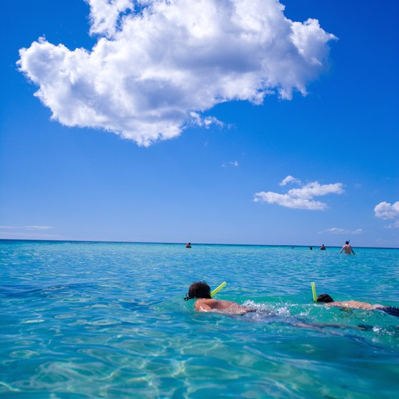 Snorkeling right off the beach is one of the major draws in the Dominican Republic.