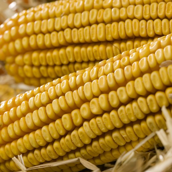 Homogenous farming products can affect how high a seller can set the price.