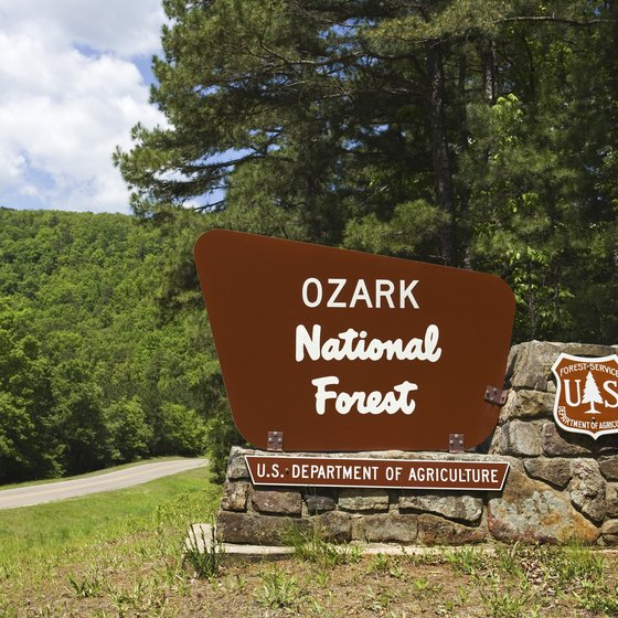 Ozark National Forest has trails and roads to drive your jeep.