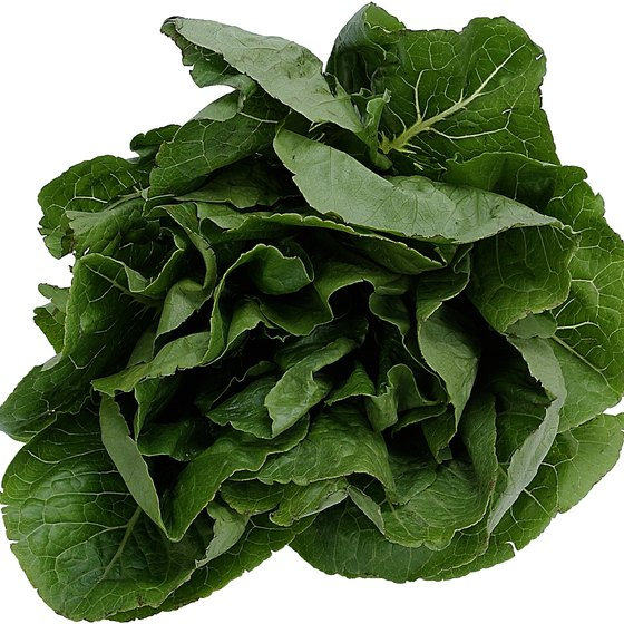 You can enjoy spinach raw in salads or cooked in number of meals.