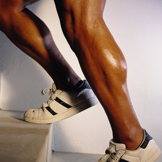 A well-developed soleus muscle appears as a vertical line at the side of the lower leg.