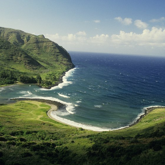 Smaller cruise ships can navigate closer to Hawaii's islands.