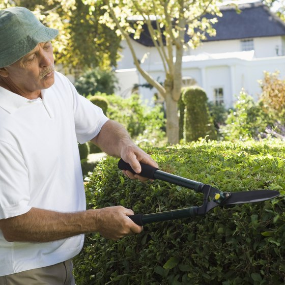 Although landscaping is often a seasonal business, normal overtime laws apply.