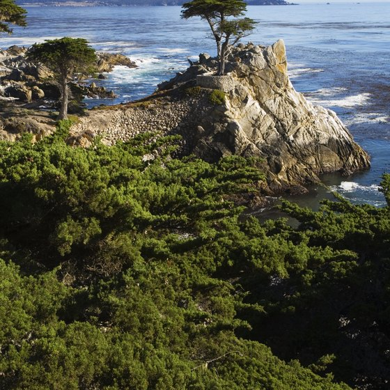 California offers plenty of camping and outdoor recreation.