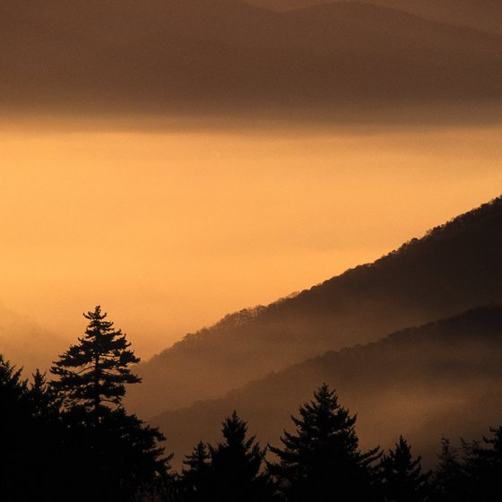 The Great Smoky Mountains are part of the Appalachian chain.