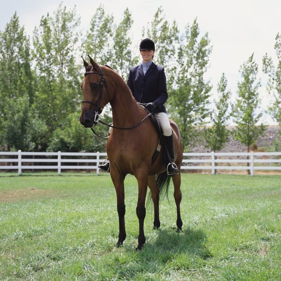 Good posture helps both your horse and yourself.