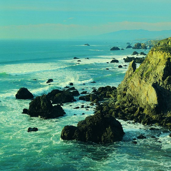 Rugged Pacific coastline near Fort Bragg, California.