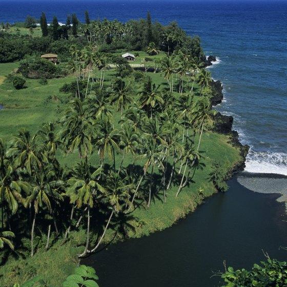 Maui YMCA Camp Keanae offers views of the Keanae Peninsula.
